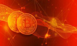 nach der Halbierung bei Bitcoin Future des Preises